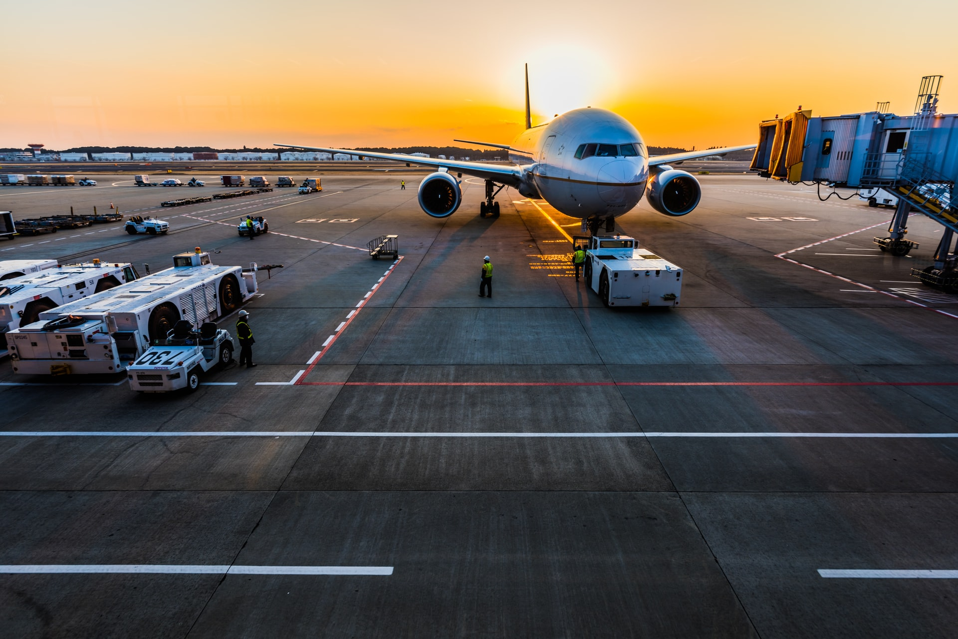 Federal support for domestic aviation extended