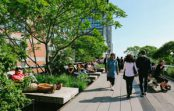 Calls for more green infrastructure to future-proof Sydney