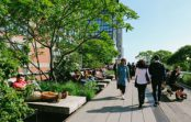 Industry calls for national green infrastructure strategy